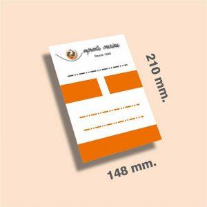 Flyers DIN A5 210 x 148 mm